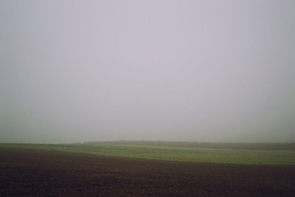 field fog layers